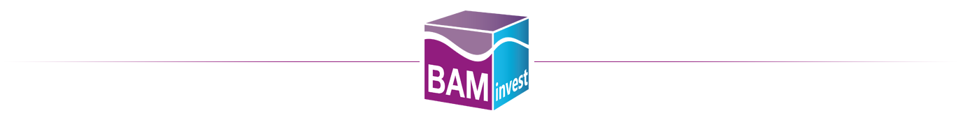 Groupe BAM INVEST